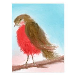 Cartão tímido do pisco de peito vermelho