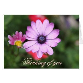 Cartão Tipo cor-de-rosa flor da margarida