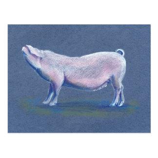 Cartão tirado mão da arte do porco do porco dos