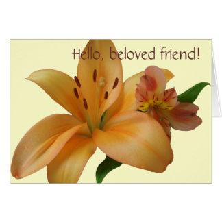 Cartão - toda a ocasião - lírio & amigo (L/F)