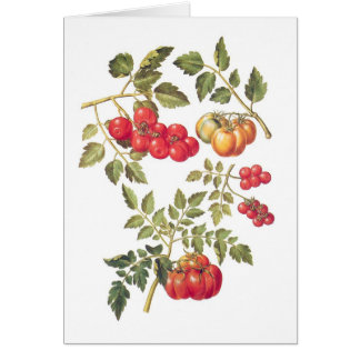 Cartão Tomates