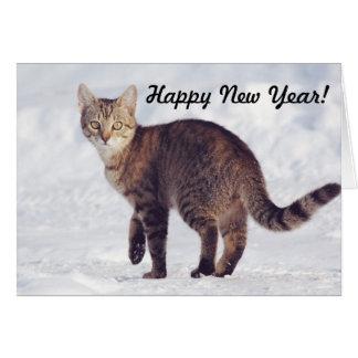 Cartão torrado do feliz ano novo do gato | da neve