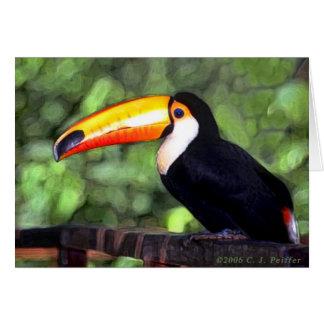 Cartão 'Toucan