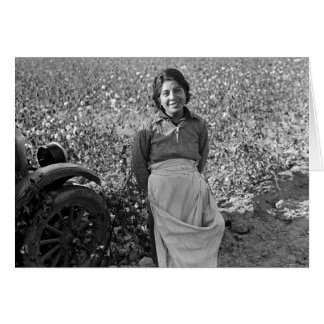 Cartão Trabalhador emigrante no campo do algodão por