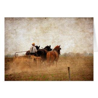 Cartão Trabalho de campo psto cavalo, aniversário