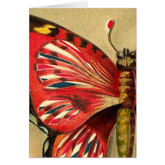 Cartão Traça do vermelho do vintage