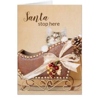 Cartão Trenó II do gatinho do Natal do país