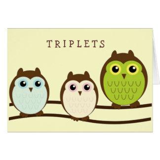Cartão Três corujas coloridas