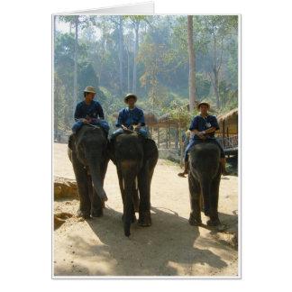 Cartão Três elefantes