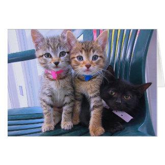 Cartão Três gatinhos