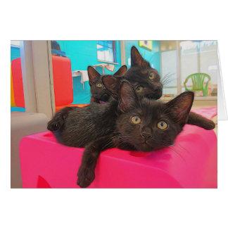 Cartão Três gatinhos pretos