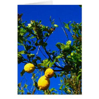 Cartão Três limões sicilianos