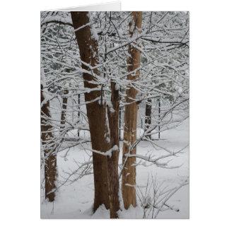 Cartão troncos nevado