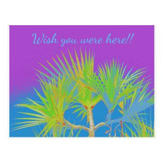 Cartão tropical das férias cartão postal