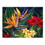 Cartão tropical do paraíso cartões postais