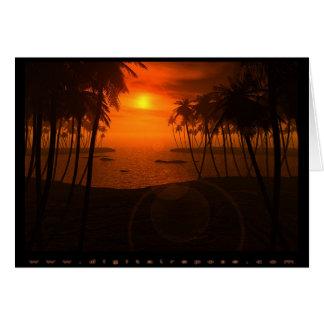 Cartão Tropico de Torrid