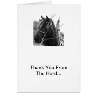 Cartão Trovão de Percheron no obrigado do chicote de fios