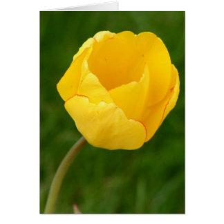 Cartão Tulipa amarela de Notecard