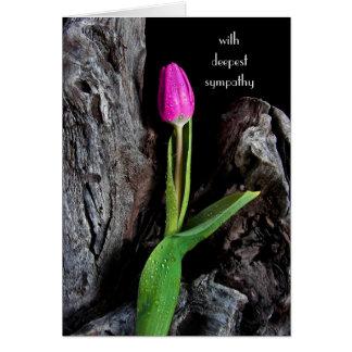 Cartão tulipa cor-de-rosa na simpatia da madeira lançada