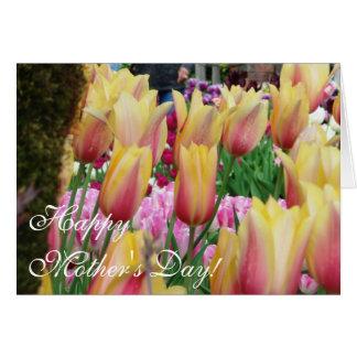 Cartão Tulipas - cor-de-rosa e amarelas - dia das mães