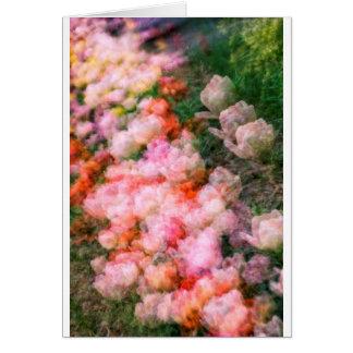 Cartão Tulipas da peônia na flor completa