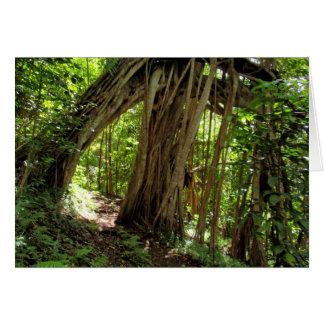 Cartão Túnel da árvore de figo
