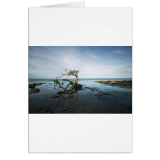 Cartão Última posição dos manguezais