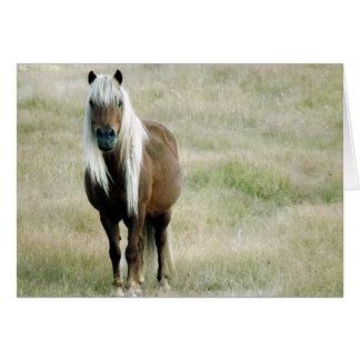 Cartão Um cavalo, naturalmente…