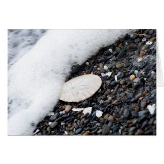 Cartão Um dólar de areia no surf