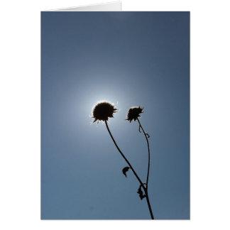Cartão Um eclipse do girassol