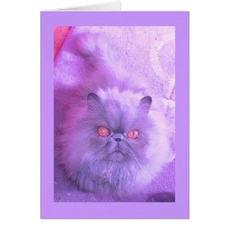 Cartão Um estudo no gato persa do Lilac