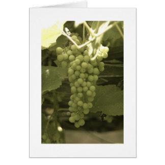 Cartão Um grupo de uvas bonito