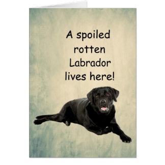 Cartão Um Labrador podre estragado vive aqui