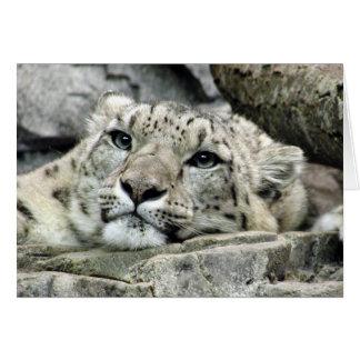 Cartão Um outro leopardo de neve de segunda-feira