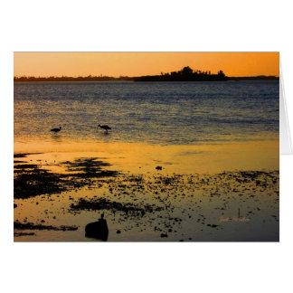 """Cartão """"Um por do sol dourado"""" em Dunedin, Florida"""