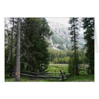 Cartão Um vale no parque nacional de Yellowstone