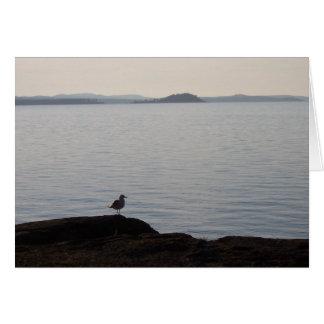 Cartão Uma gaivota sonha