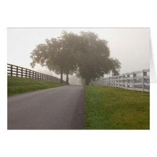 Cartão Uma manhã nevoenta do Bluegrass