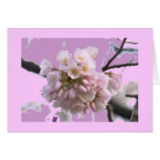 Cartão Única flor de cerejeira