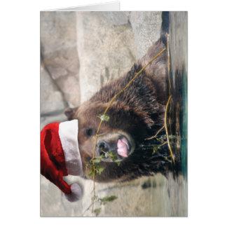 Cartão Urso de Grizzley em um chapéu do papai noel