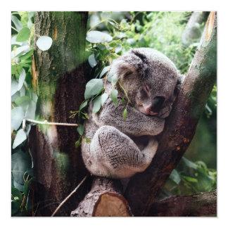 Cartão Urso de Koala bonito que relaxa em uma árvore
