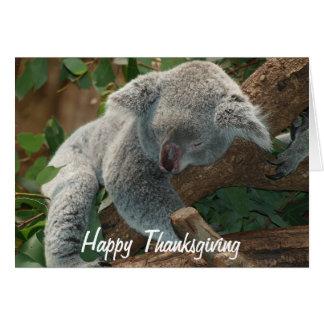 Cartão Urso de Koala Napping da acção de graças feliz