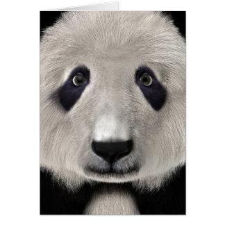 Cartão Urso de panda
