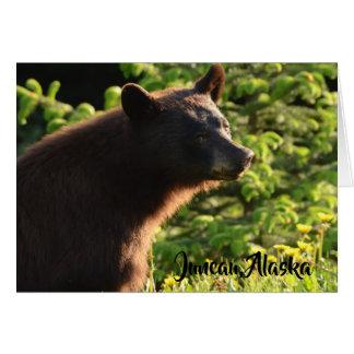 Cartão Urso do Alasca
