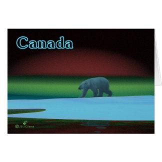 Cartão Urso polar de luzes polares