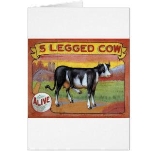 Cartão Vaca cinco equipada com pernas