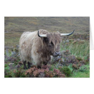 Cartão Vaca das montanhas