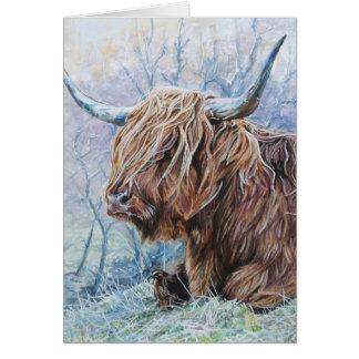 Cartão Vaca das montanhas, manhã gelado