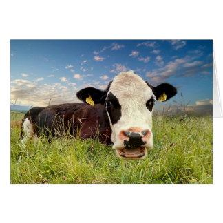 Cartão Vaca de fala
