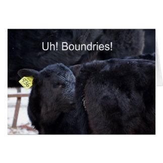 Cartão Vaca engraçada - Umm… Boundries